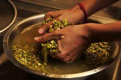 Best bean massage ever! Best Beans, Palak Paneer, Sprouts, Massage, Vegetables, Ethnic Recipes, Food, Meal, Essen