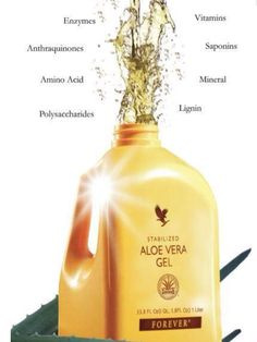 Imagine slicing open an Aloe leaf and consuming the gel directly from the plant. Our Forever Aloe Vera Gel™ is as close to the real thing as you can get. Aloe Vera Gel Forever, Forever Living Aloe Vera, Forever Living Products, Aloe Drink, Forever Living Business, Chocolate Slim, Keeping Healthy, Health And Wellbeing, Women's Health