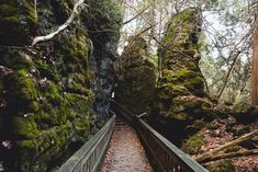This Trail Takes You To Cliffs, Caves And An Old Canyon In Ontario featured image hiking gear for beginners, hiking for women, alabama hiking Hiking Spots, Hiking Trails, Hiking Gear, Camping Gear, Amazing Destinations, Vacation Destinations, Vacation Ideas, Vacations, Cedar Forest