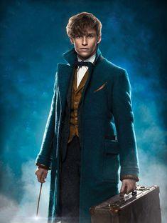 Harry James Potter, Mundo Harry Potter, Harry Potter Cast, Harry Potter Characters, Harry Potter World, Eddie Redmayne, Hogwarts, Newton Scamander, Geeks
