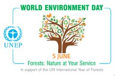 How to Celebrate World Environment Day. World Environment Day (WED) is a yearly event held on June to raise global awareness of the need to take positive environmental action. WED is run by the United Nations Environment Programme. United Nations Environment Programme, Global Awareness, World Environment Day, Reading Lists, Feelings, Nature, Life, Festivals, Articles