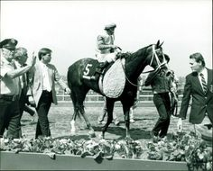 Winning Colors, the girl who beat the boys in the 1988 Santa Anita Derby by 7 lengths and  in the Kentucky Derby including Forty Niner, 1987 Eclipse Champion 2-year-old colt & son of Mr. Prospector;  Risen Star, 1988 Eclipse Champion 3-year-old colt & son of Secretariat;  Proper Reality; Regal Classic, 1987 Canadian Champion 2-year-old colt; Brian's Time, Seeking the Gold, Cefis, Private Terms, Jim's Orbit, Granacus, Lively One, Din's Dancer, Kingpost, Intensive Command, Purdue King, Sea…