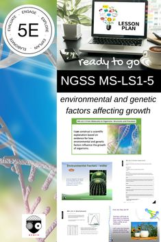 Middle School NGSS Environmental and Genetics Factors Science Curriculum, Science Lessons, Science Activities, Ngss Middle School, Next Generation Science Standards, Environmental Factors, Body Systems, Genetics, Assessment