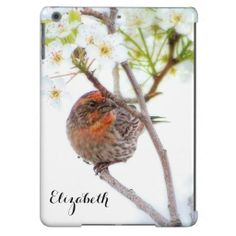 A beautiful spring themed Barely There iPad Air Case with a pretty red breasted house finch perched on a white cherry blossom tree branch. Personalized this bird lovers design by adding your name to the custom template area.