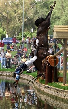Every sport has its falls and spills, but equestrian has some of the most danerous ones, and that's the reason it is considered one of the most dangerous sports in the world.