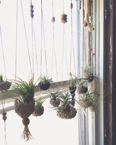 You can easily create a hanging planter as it is very simple. You just need is one container that is capable of holding some plants, potting soil, & Indoor Garden, Garden Plants, Indoor Plants, Garden Nook, Art Floral Japonais, Plantas Indoor, Air Plant Display, Deco Floral, Hanging Planters