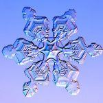 Una mirada microscópica a los copos de nieve