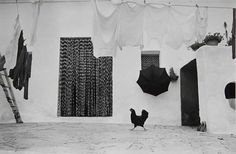 Edouard Boubat - Great Black and White Photos from Masters of Photography