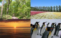Ekinavi - Hokkaido and Sakhalin Travel Information - 北海道とサハリンの観光情報