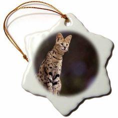 3dRose Africa. Serval (Felis serval), wildlife - NA02 SWE0036 - Stuart Westmorland, Snowflake Ornament, Porcelain, 3-inch