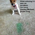 I got into the food coloring.
