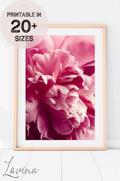 Lovely Printable Poster with Modern Floral Photography! ♥︎ INSTANT Download! Easily customisable to 20+ frame sizes! Downloadable Art. Pink Peonies, Pink Flowers, Pink Flower Pictures, Peony Print, Types Of Printer, Floral Photography, Frame Sizes, Botanical Prints