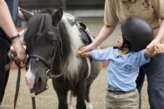 Horsing Around for Autism. Positive effects of equine therapy  http://www.racingfuture.com/content/horsing-around-autism-positive-effects-equine-therapy