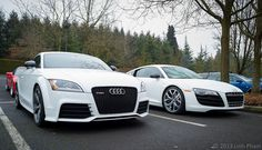 White Audi #WantAnR8 and TT RS