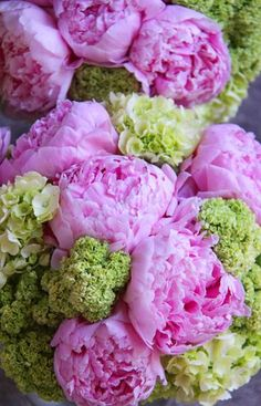 Love this color combination.Gorgeous Peonies and green Hydrangea bouquets.