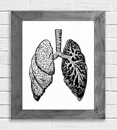 Lungs Print, Lung Art, Anatomical Lungs, Anatomy Wall Art, Doctor Gift, Science Gift, Science Art, Medical Art, Medical Student, Minimalist