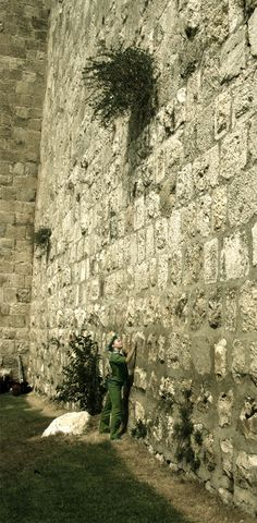 Jerusalem, Israel. The 'wailing wall'. West wall of the old Temple