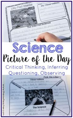 This is a Science Picture of the Day activity or science warm up center. Students analyze real life photographs and infer the science in it. It is an excellent way to practice observation, noting key details, practice science vocabulary, and inference skills. A higher order thinking skill that's perfect for science warm ups and practicing writing all while meeting common core standards. $