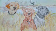 3 hunting labradors