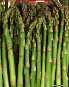 Asparagus Growing Guide - Martha Stewart Lawn and Garden Organic Gardening, Gardening Tips, Vegetable Gardening, Dubai Miracle Garden, Growing Veggies, Growing Lettuce, Garden Guide, Growing Seeds, Edible Garden