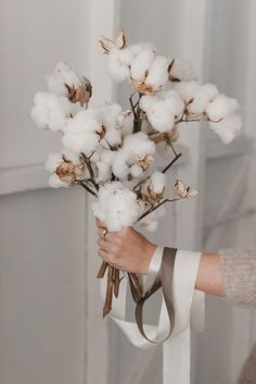 5 ways to update your home using flowers Cotton flowers Dried Flower Arrangements, Dried Flowers, Cotton Bouquet, Cream Aesthetic, Cotton Plant, Deco Floral, Flower Wall, Plant Decor, Pretty Flowers