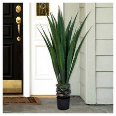 Enhance your home, office or anywhere else with the Pure Garden Giant Agave Floor Plant. This amazing plant features17 leaves, full of the spiny lushness that burst forth from the thick trunk that rises from the included pot. You can always look forward to the rich green tones of the Giant Agave Tree for years to come, without water or care. It's a bold piece of décor that will definitely attract attention.