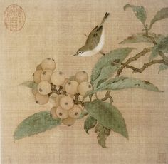 loquat and bird chinese silk painting song dynasty