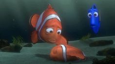 After searching for his young boy Nemo, Marlin finally finds him .