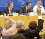 'EP zet privacybescherming bij het grof vuil'   Webwereld