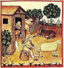 Ilustración del siglo XIV de Tacuinum sanitatis