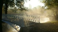 Morden Hall Park - National Trust - London