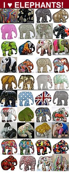 I love elephants!
