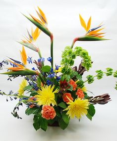 """WOW"" of the WEEK Vibrant Orange Birds of Paradise, Lucky Green Bells of Ireland, Blue Delphinium, Orange Carnations, Autumn Sunshine Fuji Chrysanthemums and Safari Sunset Beautifully Designed in a Fall Orange Glass Cube."