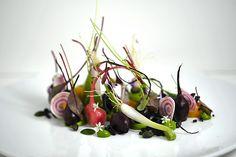 beets, miner's lettuce, sorrel, wild onion bulbs