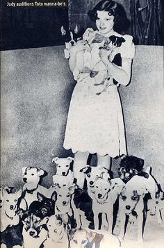 Judy Garland at the Toto audition. Toto was supposed to be a Jack Russell Terrier.