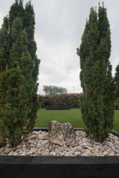 Diseño para jardín de bajo mantenimiento