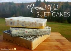 Coconut Oil Suet Cakes for Chickens or Wild Birds   Fresh Eggs Daily®