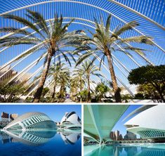 7 redenen waarom Valencia de perfecte citytrip is ; city trip to Valencia, Spain (Dutch) Vacation Places, Vacation Trips, Countries Around The World, Around The Worlds, Futuristic Architecture, Alicante, Spain Travel, Travel Inspiration, Madrid