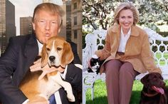 How The Presidential Candidates Stack Up When It Comes To Animal Issues