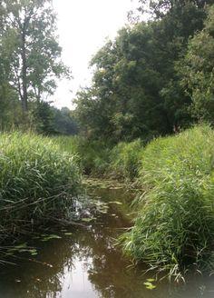 Leudal, Limburg.