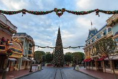 'Tis the season for holiday decorations and the Disneyland Resort does the most spectacular job at decking the halls.