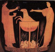 Medea rejuvenates the bull