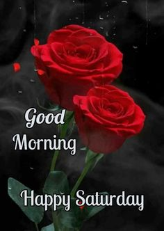 Good Morning Happy Saturday, Morning Quotes, David, Coffee, Happy, Kaffee, Cup Of Coffee