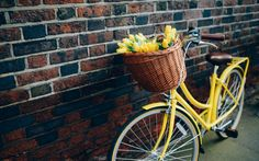 yellow bicycle and basket of flowers | collection great pictures, pure High Definition HD. You can download ...