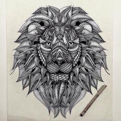Drawings by Faye Halliday www.fayehalliday.com León, lion, ilustración,