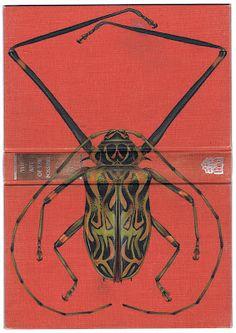 Insectos en los libros   Ikusi batusi