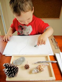 reggio observational drawing with natural materials activities for preschoolers {An Everyday Story}