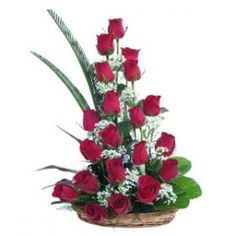 Send Flowers Online to Make your Special Occasion Even More Special and Impress your Loved one With our Pretty Baskets through our Shop2AP. Red Rose Speaks the Language of Love Better than Anything or Anyone in the World. Our Florist has Created the Red Roses Basket Especially for the Special Occasions. We also make Midnight Delivery Service; So Plan a Surprise Party for your Loved One and We will Deliver the Flowers at Midnight.