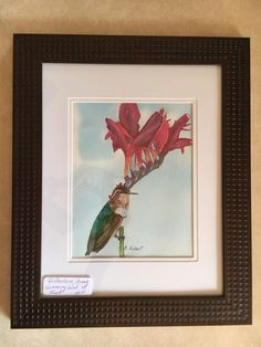 """Reflections, Female Hummingbird at Rest, is a 9"""" x 12"""" Original Watercolor with Female Hummingbird and Exotic Red Flowers, Framed and Matted by EagleWingsArt on Etsy"""