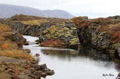 Þingvellir í haustskrúða. Þingvellir, Iceland.